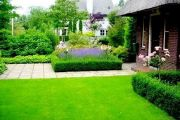 Самостоятельно оборудуем газон на собственном участке