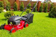 Как подстричь газон на собственном участке самостоятельно