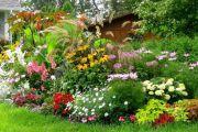 Как устроить настоящий цветник своими руками