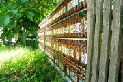Забор из пластиковых бутылок: преимущества, виды