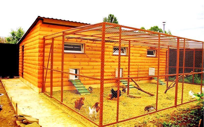 Как построить птицеферму своими руками 41